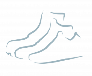 Whichfootwear.com icon